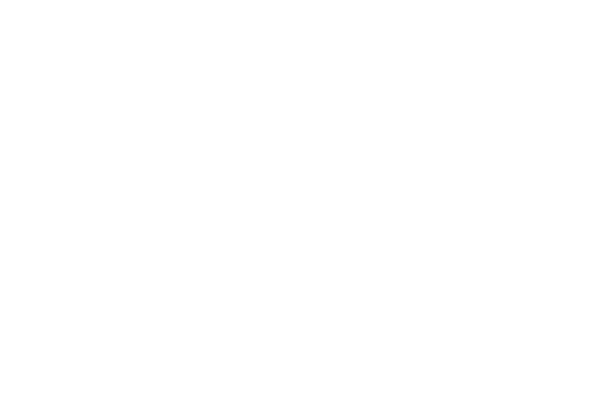 ses business water white logo